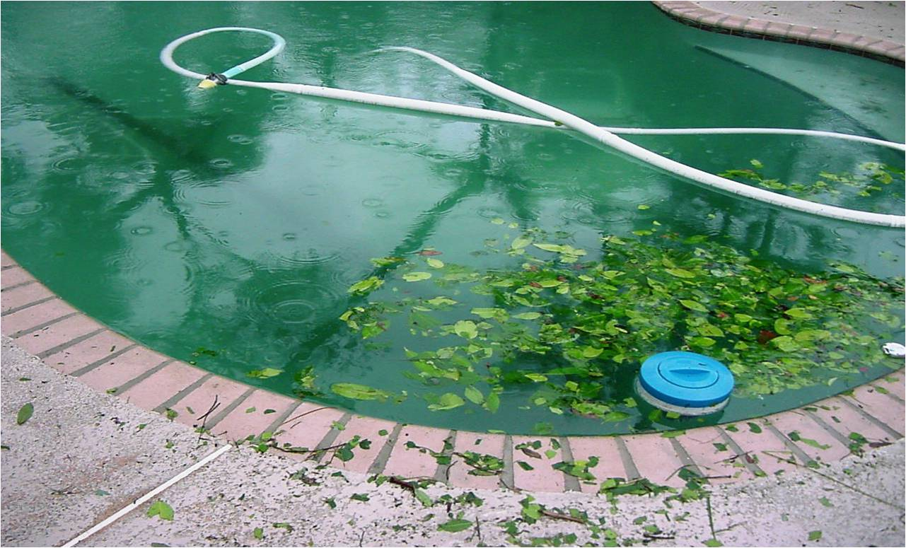 how to quickly clean the surface of pool